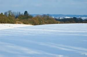 kentfield in the snow 2-min